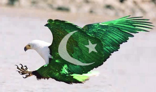 download 14 August 2012 Pakistan Flag Shaheen Eagle Wallpapers