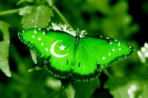 Download Pakistan Independence Azadi HD Wallpapers