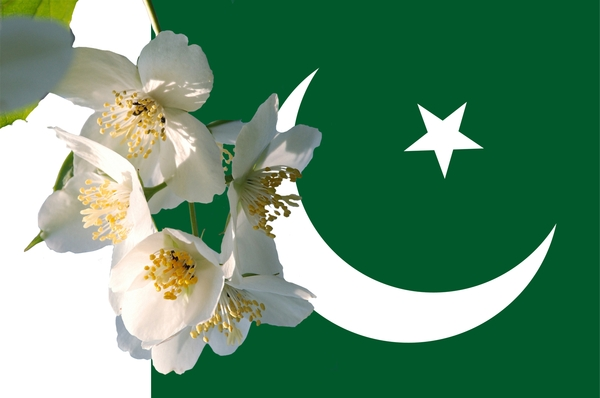 Pakistan Flag Wallpapers hd 2014 Flag hd Wallpapers Jpg